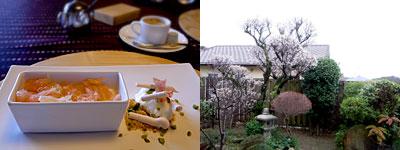 フランス料理 颯香亭(そうかてい):糸島のヨーグルトをシャーベットにしたもの