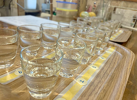 OLENOVA(オレノバ):日本酒飲み比べ